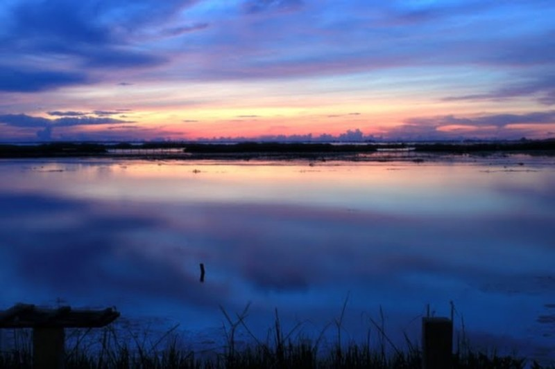 Thale Noi Waterfowl Reserve, ทะเลน้อย